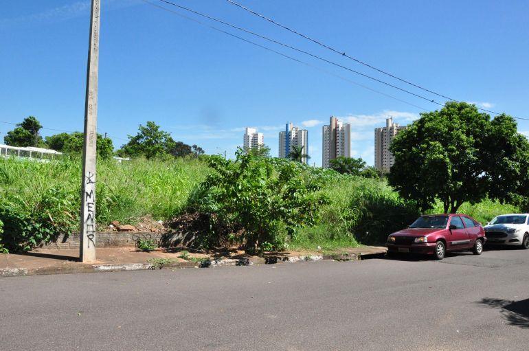 José Reis - Terreno com mato alto e acúmulo de lixo vira problema para moradores