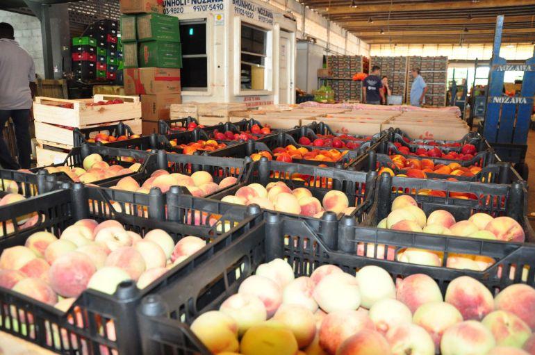 José Reis - Pêssego está entre frutas preferidas dos consumidores na Ceagesp