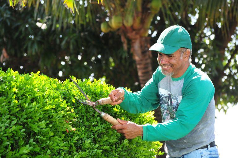 Marcio Oliveira - João trabalha diariamente nas praças da cidade, plantando, podando e cuidando das mudas